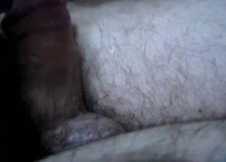 White dog can't stop sucking dick on cam